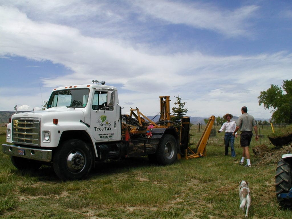 Tree Moving Service Longmont CO
